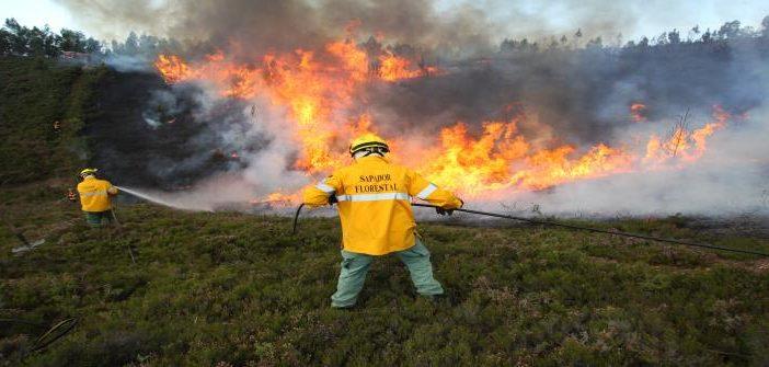Câmara promove exercício com fogo controlado  para defesa da floresta contra incêndios